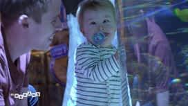 Les mamans : Visite de l'aquarium en famille