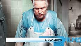 Krimi / Thriller : A nyomozó