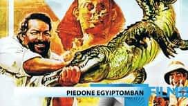Akció / Kaland : Piedone Egyiptomban