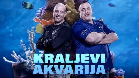 Kraljevi akvarija en replay