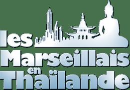 Program - logo - 4772