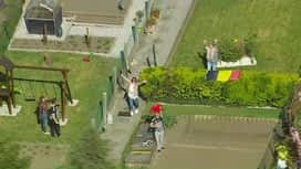 Belges à domicile vus du ciel : Suivez l'hélicoptère de 16h10 à 16h30