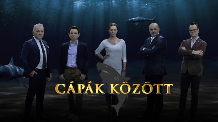 Cápák között