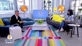 Belges à domicile : Quels talents ! : Belges à domicile : quels talents ! (partie 5)