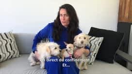 Top Models : Rena Sofer et ses animaux de compagnie