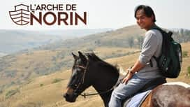 L'arche de Norin en replay
