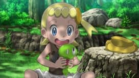 Pokemon : S19E01 De A à Z