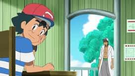 Pokemon : S22E30 Un Pokemon très convoité !
