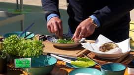 Martin Bonheur : Merlan frit en colère sauce tartare