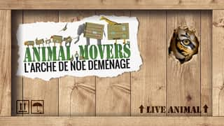 Animal Movers - L'Arche de Noé déménage