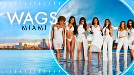 WAGS Miami en replay