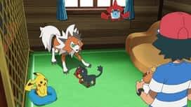 Pokemon : S21E19 Une autre forme de miaouss !