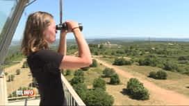 RTL INFO 13H : France: rencontre avec les guetteurs de feux de forêt, un job d'été...
