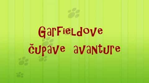 Garfieldove čupave avanture : Garfieldove čupave avanture