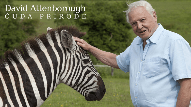 David Attenborough: Čuda prirode