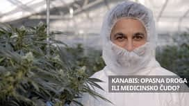 Kanabis: Opasna droga ili medicinsko čudo? en replay