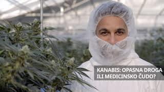 Kanabis: Opasna droga ili medicinsko čudo?