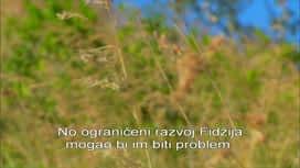 Potraga za otokom : Epizoda 6 / Sezona 1