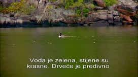 Potraga za otokom : Epizoda 3 / Sezona 3