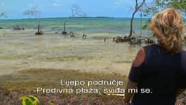 Potraga za otokom : Epizoda 7 / Sezona 5