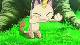 Pokemon : S17E19 Conspiration pour la conquête !
