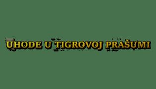 Program - logo - 17831