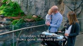 Lovci na nekretnine : Epizoda 5 / Sezona 8
