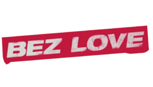 Program - logo - 17875