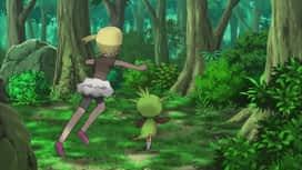 Pokemon : S17E44 Le combat des héritiers !