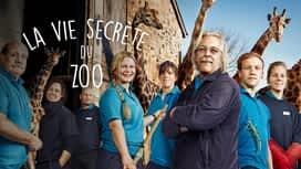 La vie secrète du zoo en replay