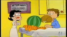 Garfield i prijatelji : Epizoda 17 / Sezona 1