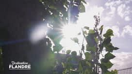 Destination Flandre : Emission du 30/09/20