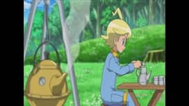 Pokemon : S18E40 Une jolie rencontre au milieu des fleurs !