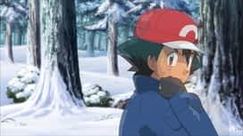 Pokemon : S19E28 Quand les arbres cachent la forêt !