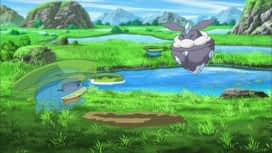Pokemon : S19E30 Un diamant brut !