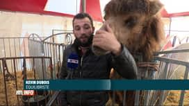 RTL INFO 13H : Coronavirus: un cirque est confiné depuis 8 mois sur un parking à G...
