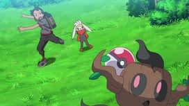 Pokemon : S23E25 Rencontres au festival !