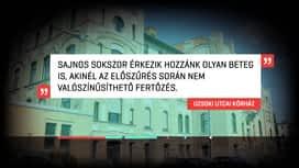 RTL Híradó : RTL Híradó 2020-11-24