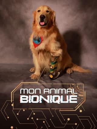 Mon animal bionique