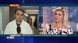 RTL INFO 19H : Vaccin contre le coronavirus: l'avis de Laurent Gillet, professeur ...