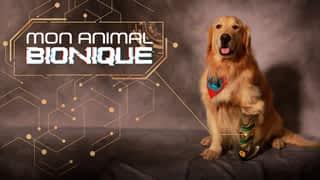 Bande-annonce : Mon animal bionique