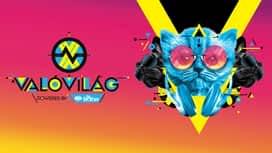 ValóVilág powered by Big Brother : Jöttem, láttam, buktam (VV Digo) | VV10