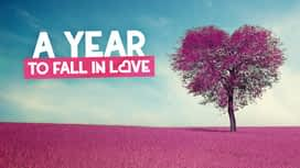 A year to fall in love en replay