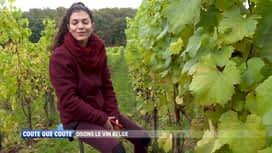 Coûte que coûte : Les vins et mousseux belges : Les stars de cette fin d'année ?