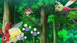 Pokemon : S23E32 L'étrange rendez-vous