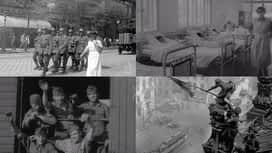 XXI. század : XXI. század - A háború szégyenben maradt áldozatai (2021-01-11)