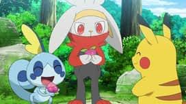 Pokemon : S23E35