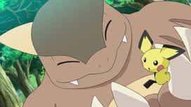 Pokemon : S23E01 Un Pichu solitaire !