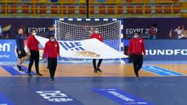 Svjetsko prvenstvo u rukometu 2021. - GRUPA B : ESP - BRA / Španjolska - Brazil