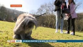 RTL INFO 19H : Des allures printanières pour la météo ce samedi, avec un mois d'av...